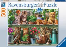Ravensburger 14824 Puzzle Katzen im Regal 500 Teile