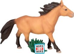 Tonies® WAS IST WAS - Wunderbare Pferde/Reitervo, ab 3 Jahren.