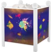 Magische Laterne Regenbogenfisch, weiß, Nachtlicht, ca. 16,5x16,5x19 cm, ab 3 Jahren